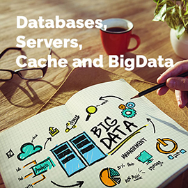 Databases, Servers, Cache and BigData